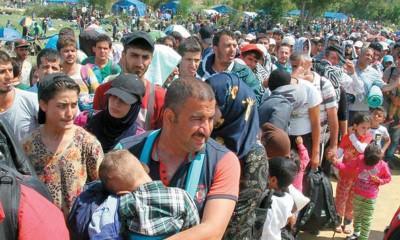 refugiados_cn